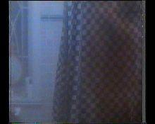 Elizabeth Perkins Topless
